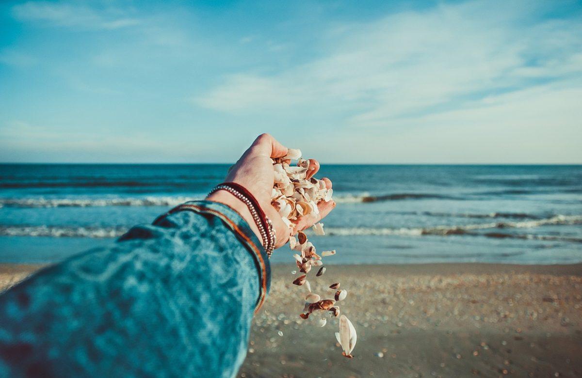 Muscheln in der Hand am Strand